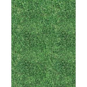 ΧΑΡΤΟΝΙ ΚΟΛΑΖ ART 50X70cm GRASS